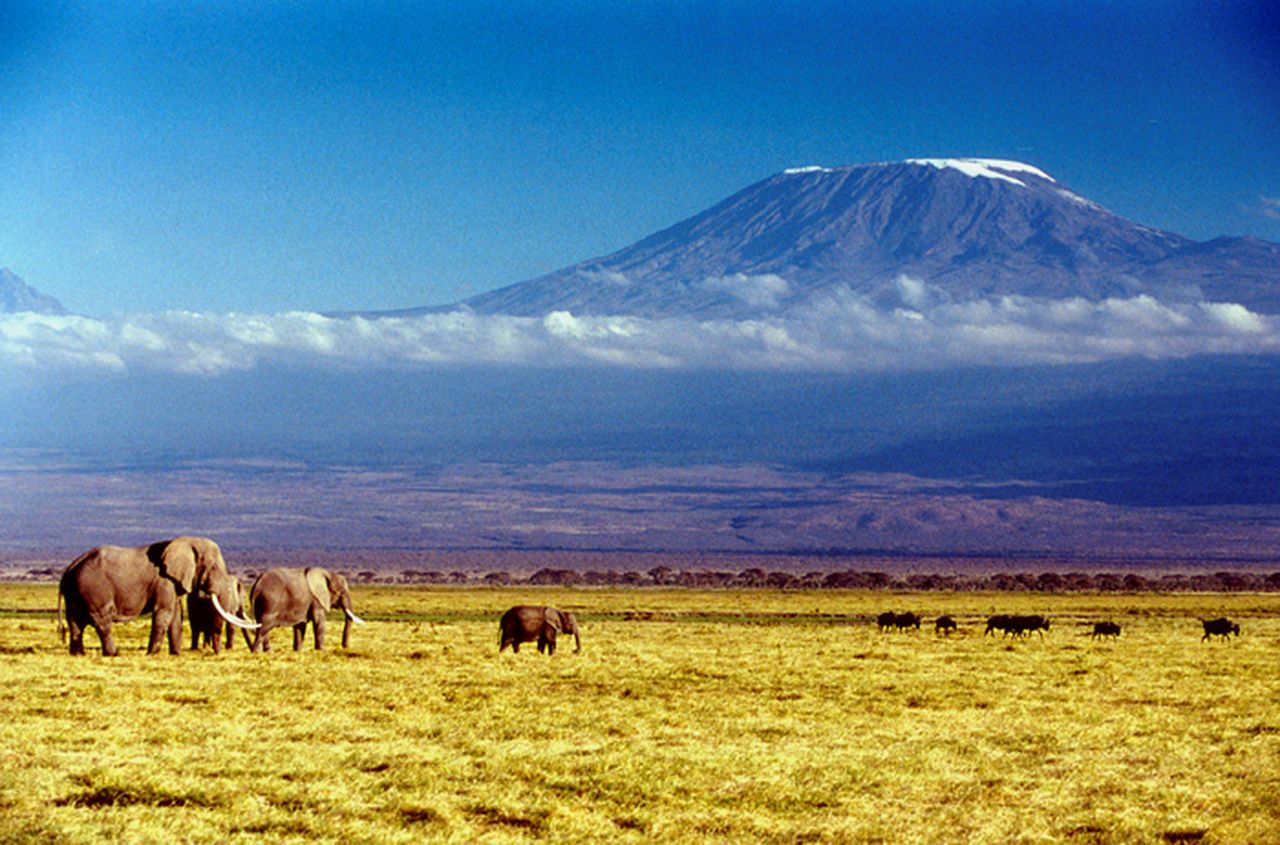 Kilimanjaro-africa-original